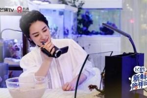 《新鲜陪伴记》刘璇收官 节目创新模式获官方点赞