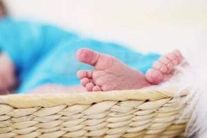十一个月婴儿辅食食谱有哪些食物不能吃